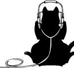ハイレゾ音源の標準FLACってどんなもの?MP3やWAV、DSDとの違いって??